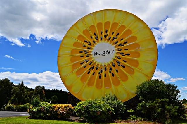 Jedna z ikon mesta Te Puke, zlaté kiwi